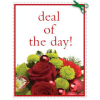 FLORIST DESIGN KEEPSAKE CHRISTMAS CONTAINER