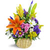 Ode to Springtime Baskets deluxe