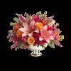 Beauty In Bloom premium