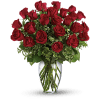 Red Roses Arranged premium