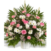 Traditional Lovely Pink Display