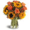Sweet Harvest Sunflowers™ by Lovingly