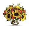 Sunny Sunflowers Bqt premium