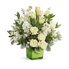 Winter Burst Arrangement premium
