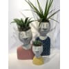 Family Affair Planters