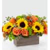 The FTD Happy Harvest Garden premium
