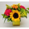 Cheering You Up (Sunflowers out of season) deluxe