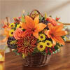 Basket Arrangement-Autumn