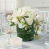 white elegance by Twigs premium