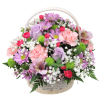 Talisman's Spring in Bloom