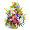 The Stargazer Blessings Basket