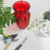 Designer's Choice in Red Glass Vase standard