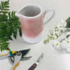 Designer's Choice in Pink and White Pitcher standard
