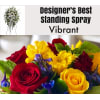 Vibrant  Mix-Standing Spray standard