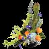 Talisman's Garden Oasis Bouquet premium
