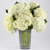 IVORY HYDRANGEA BOUQUET BY VERA WANG deluxe