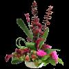 Talisman's Floral Fantasy standard
