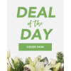 Florist Choice - Holiday standard