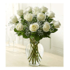 1 Dozen white roses in a vase with greens and baby's breath standard
