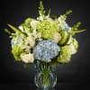 THE SUPERIOR SIGHTS LUXURY BOUQUET deluxe
