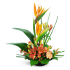 birds of paradise arrangement premium