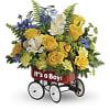 Sweet Little Wagon - Blue premium