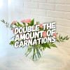 Carnation Presentation premium