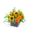 Fresh Thyme Flower Arrangement premium