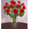 Rose Elegance™ Premium Long Stem Red Roses standard
