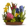 Spring Favorites standard