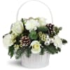 Silver Kisses™ Basket standard