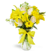 Smile a Mile Daisy Vase™ deluxe