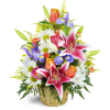 Stargazer Blessings Basket™ premium