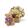 The FTD® Welcome™ Bear Bouquet premium