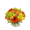 The FTD® Vibrant Views™ Bouquet in a Bubble Bowl deluxe