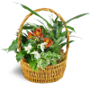 Thinking of You Garden Basket premium