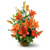Asiatic Lily Basket standard