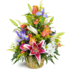 Stargazer Blessings Basket™ standard
