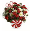 Teleflora's Candy-Striped Christmas Bouquet premium