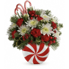 Teleflora's Candy-Striped Christmas Bouquet standard