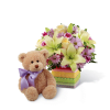 The FTD® Welcome™ Bear Bouquet deluxe