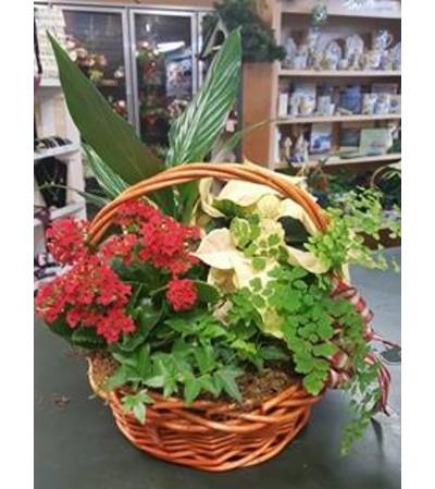 Christmas European Garden Basket