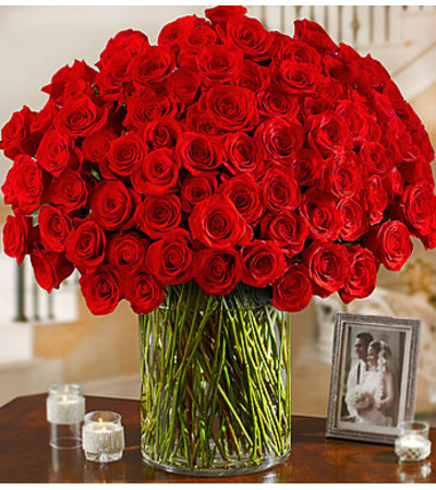 Long Stem Red Roses 100 Premium