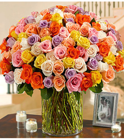Long Stem Multicolored Roses 100 Premium