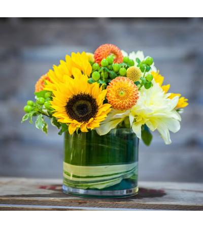 Flowers & Festivities' Assurance