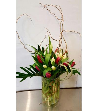 Glamorous Tulips