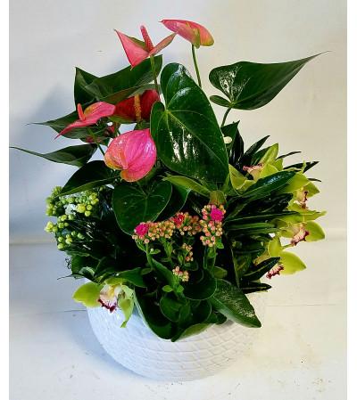 Lovely Garden Planter