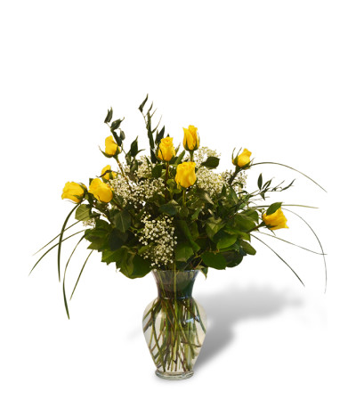 Premium Dozen Roses in Yellow