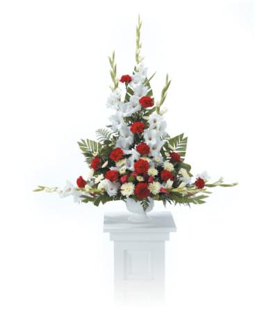 Pedestal Arrangement CTT24-21