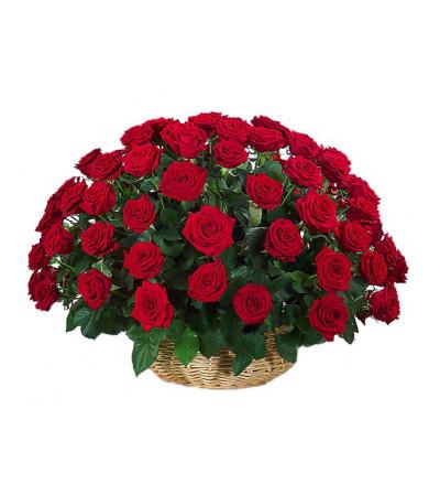 Red roses whisper